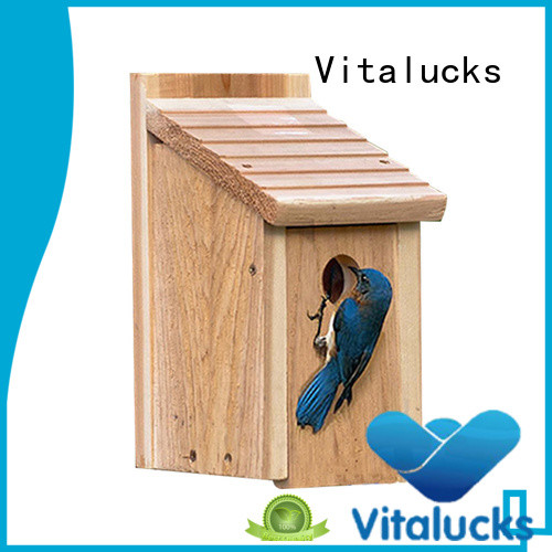 latest custom birdhouses environmental friendly bulk supply