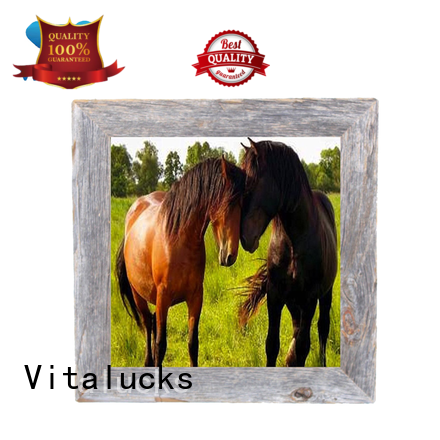 Vitalucks hot-sale cool picture frames wholesale supply fast delivery
