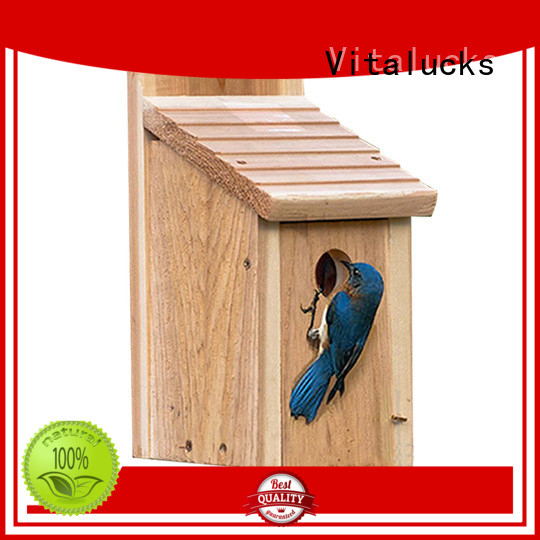 Vitalucks wooden bird box custom bulk supply